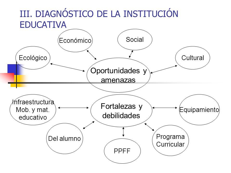 III. DIAGNÓSTICO DE LA INSTITUCIÓN EDUCATIVA