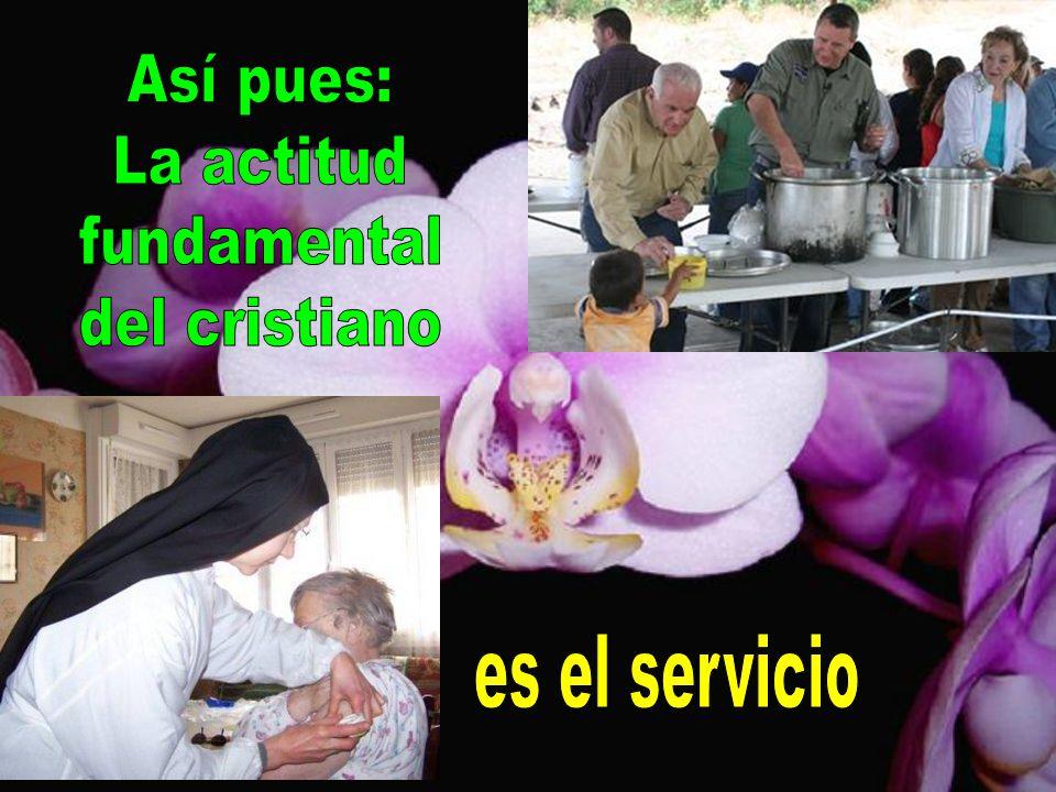 Así pues: La actitud fundamental del cristiano es el servicio
