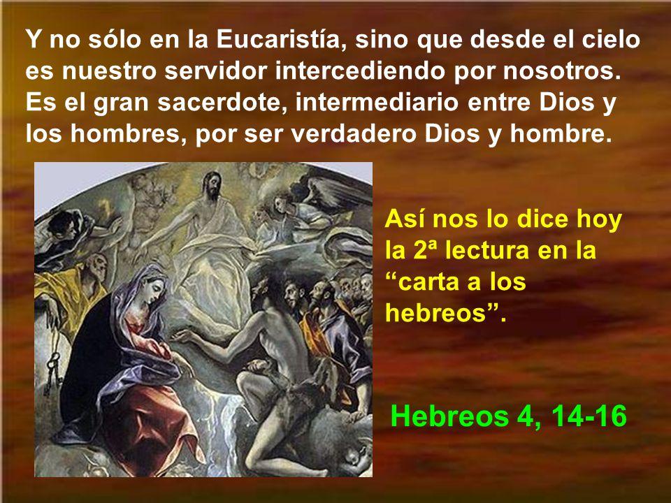 Y no sólo en la Eucaristía, sino que desde el cielo es nuestro servidor intercediendo por nosotros. Es el gran sacerdote, intermediario entre Dios y los hombres, por ser verdadero Dios y hombre.