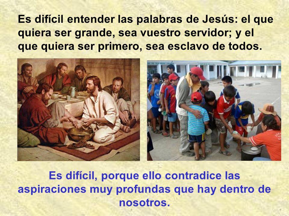 Es difícil entender las palabras de Jesús: el que quiera ser grande, sea vuestro servidor; y el que quiera ser primero, sea esclavo de todos.
