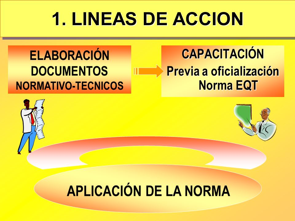 1. LINEAS DE ACCION APLICACIÓN DE LA NORMA