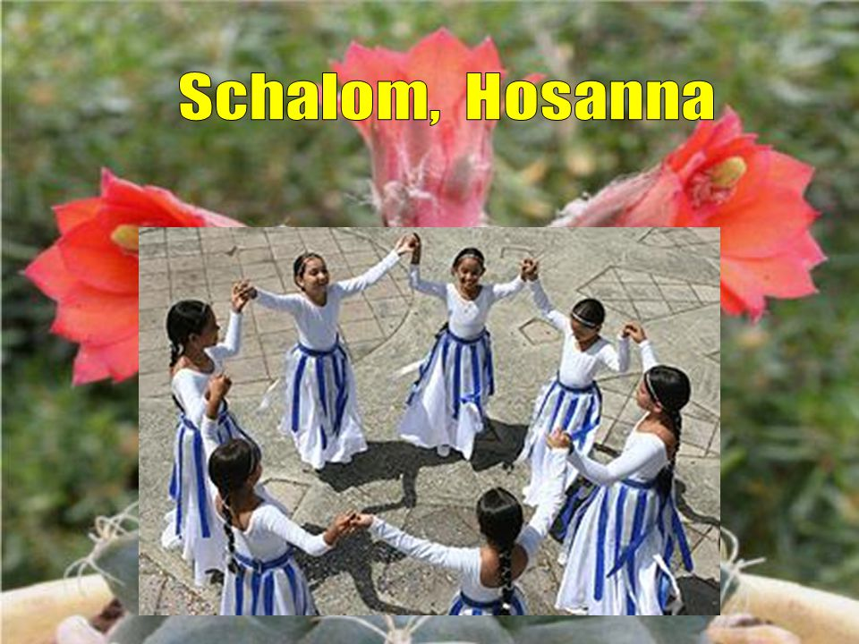 Schalom, Hosanna