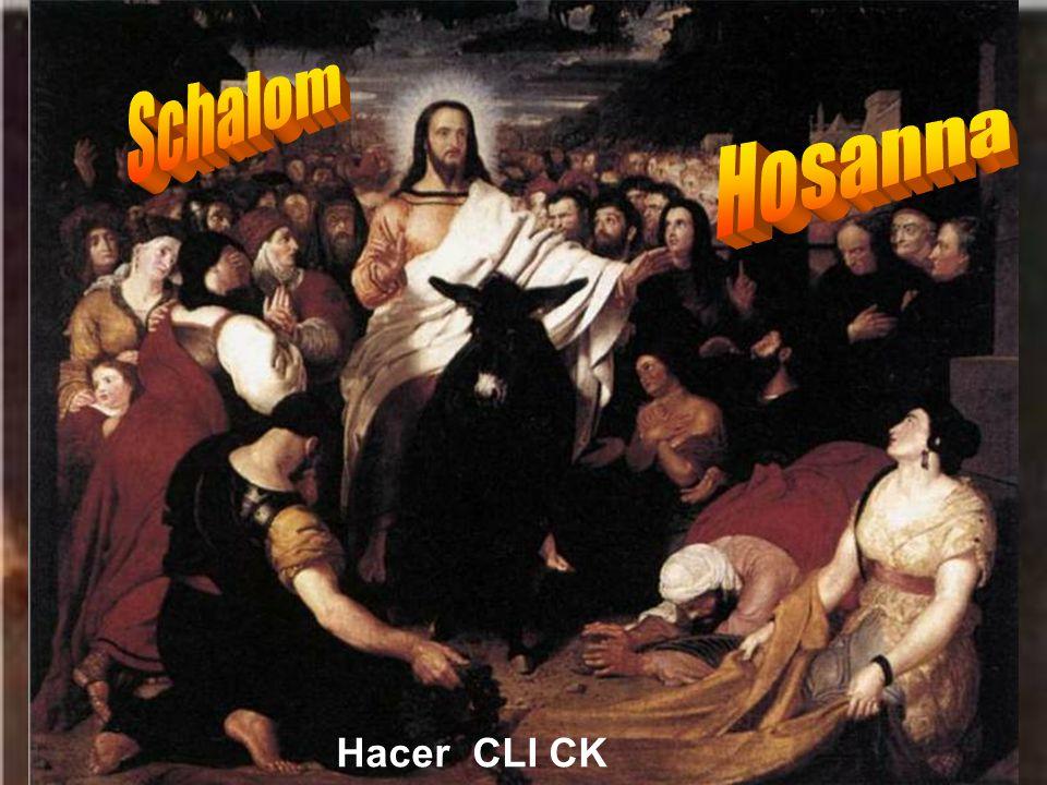 Schalom Hosanna Hacer CLI CK
