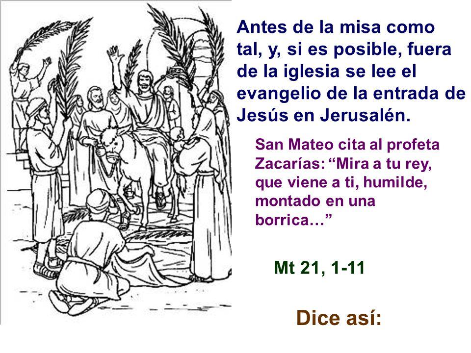 Antes de la misa como tal, y, si es posible, fuera de la iglesia se lee el evangelio de la entrada de Jesús en Jerusalén.