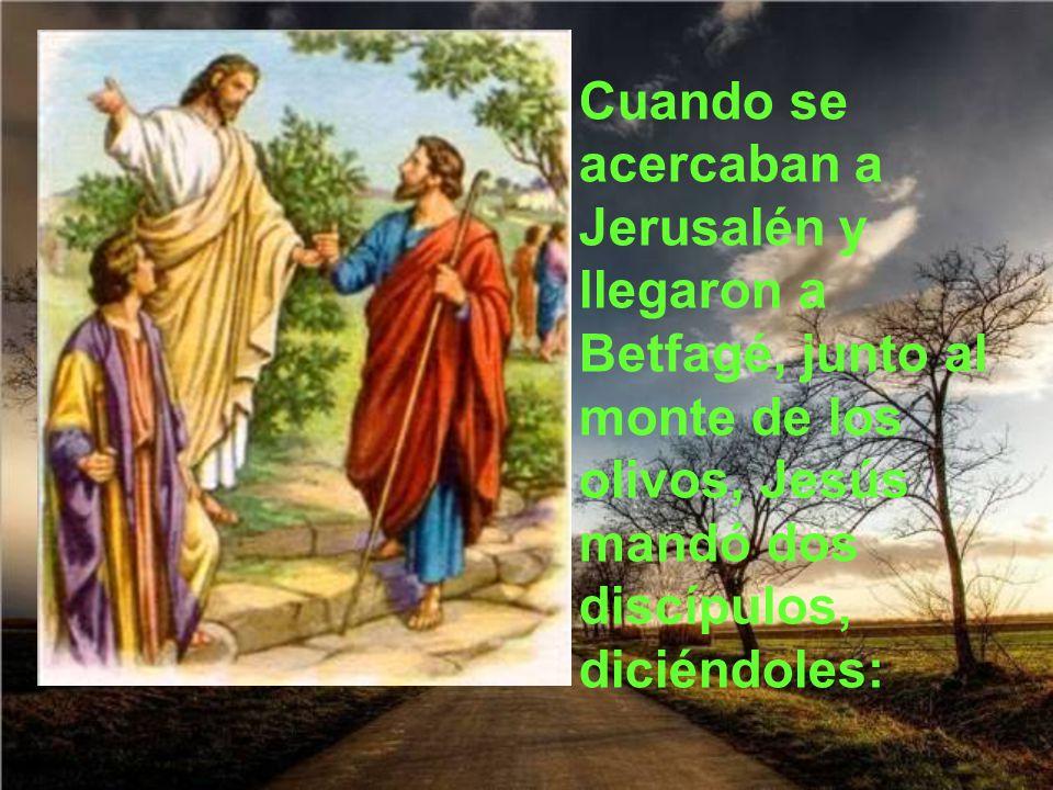 Cuando se acercaban a Jerusalén y llegaron a Betfagé, junto al monte de los olivos, Jesús mandó dos discípulos, diciéndoles: