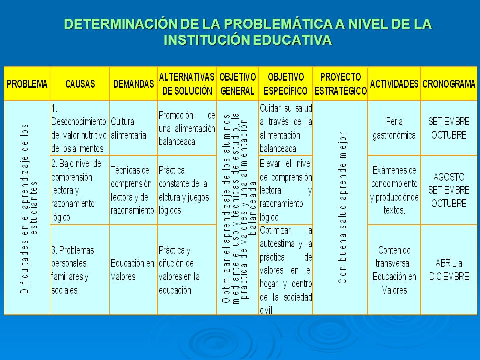 DETERMINACIÓN DE LA PROBLEMÁTICA A NIVEL DE LA INSTITUCIÓN EDUCATIVA
