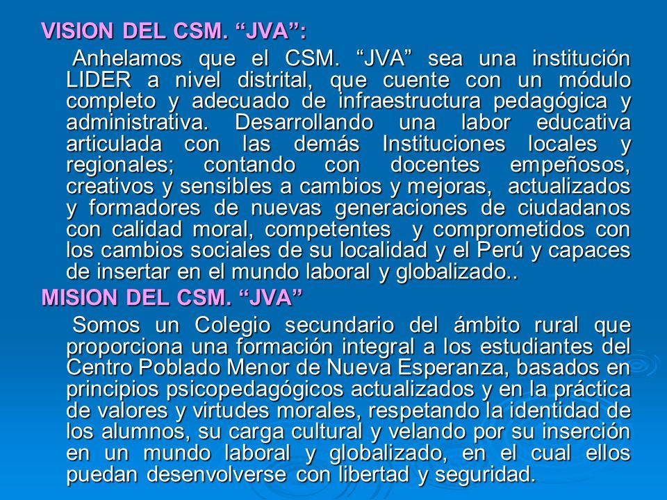 VISION DEL CSM. JVA :