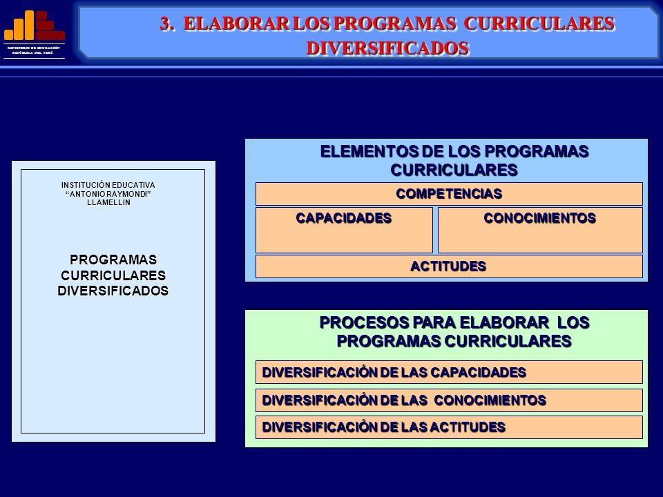 3. ELABORAR LOS PROGRAMAS CURRICULARES DIVERSIFICADOS