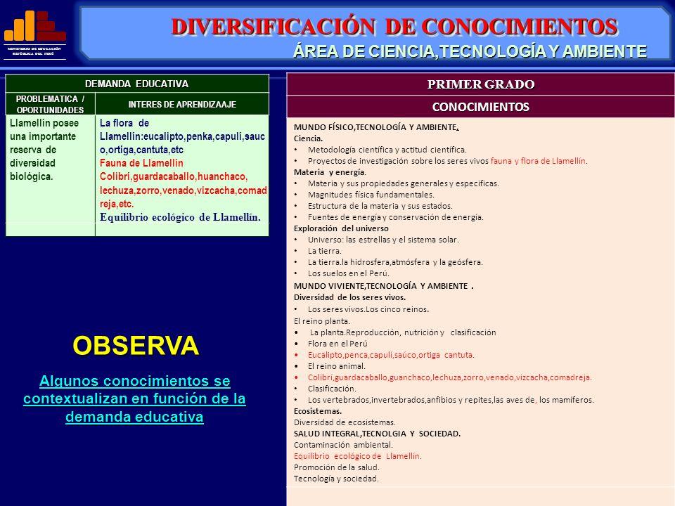 OBSERVA DIVERSIFICACIÓN DE CONOCIMIENTOS