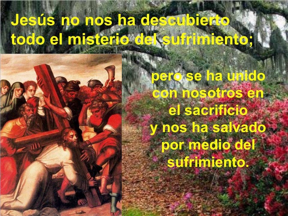 Jesús no nos ha descubierto todo el misterio del sufrimiento;