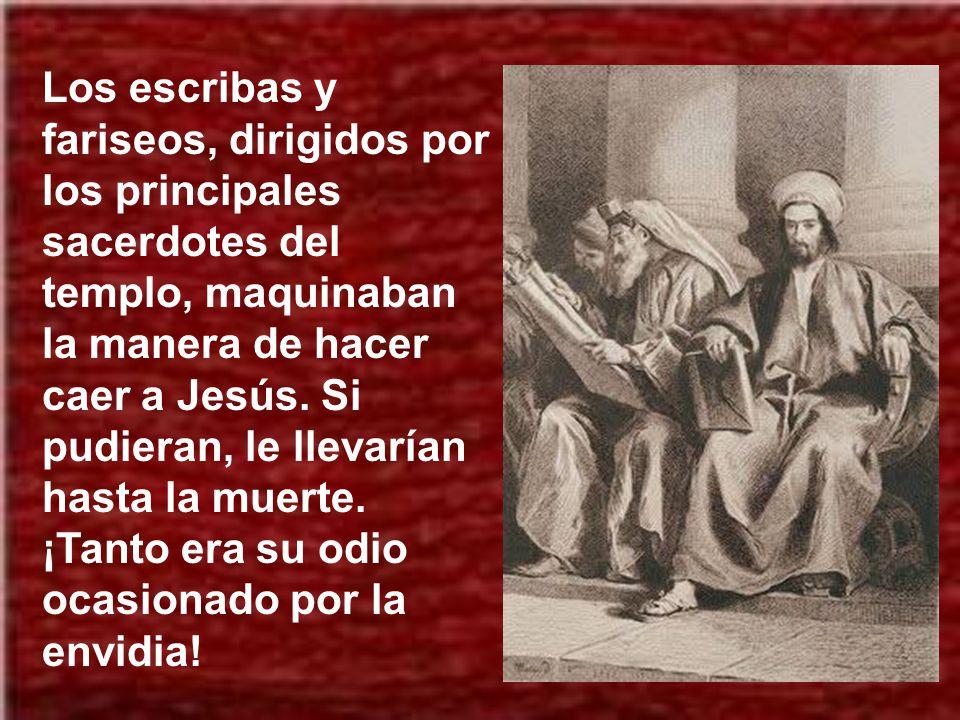 Los escribas y fariseos, dirigidos por los principales sacerdotes del templo, maquinaban la manera de hacer caer a Jesús.