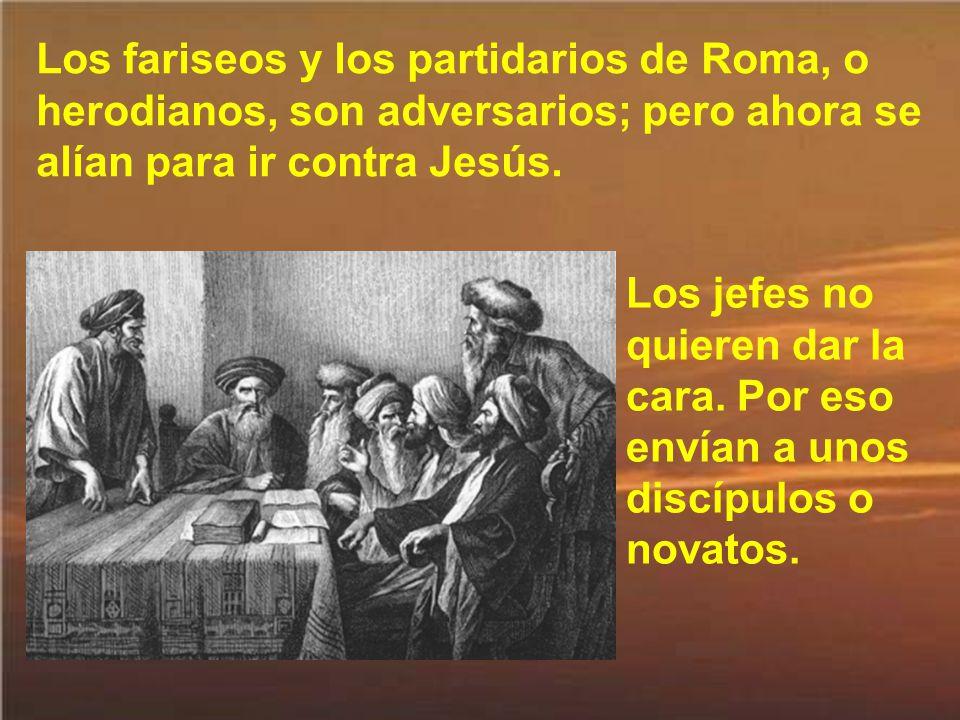 Los fariseos y los partidarios de Roma, o herodianos, son adversarios; pero ahora se alían para ir contra Jesús.