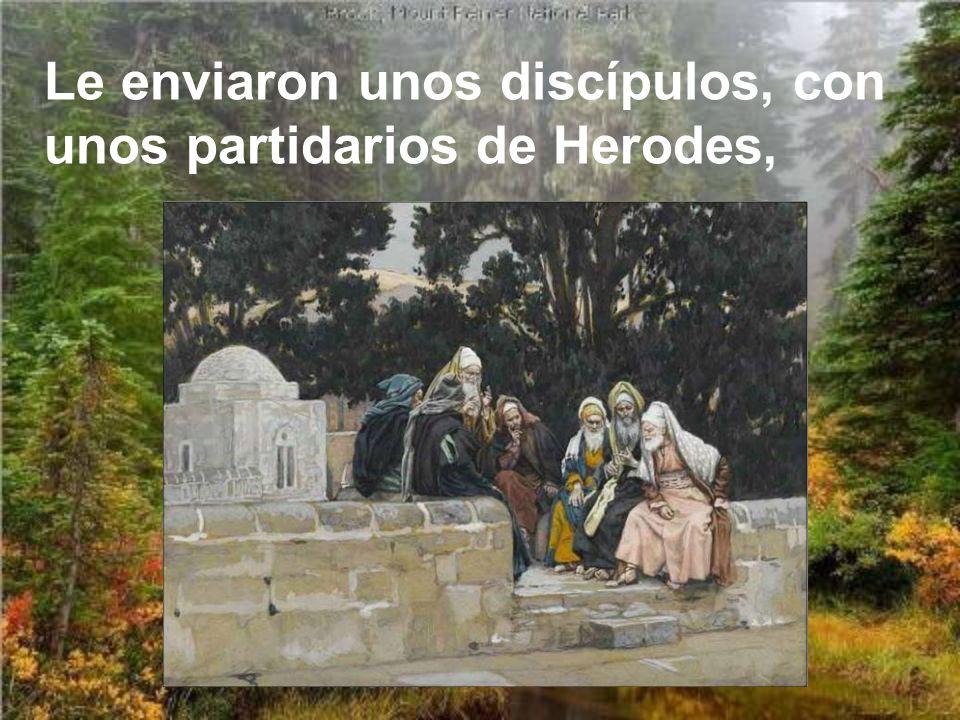 Le enviaron unos discípulos, con unos partidarios de Herodes,