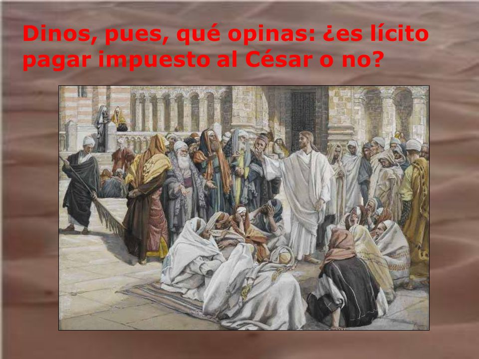 Dinos, pues, qué opinas: ¿es lícito pagar impuesto al César o no