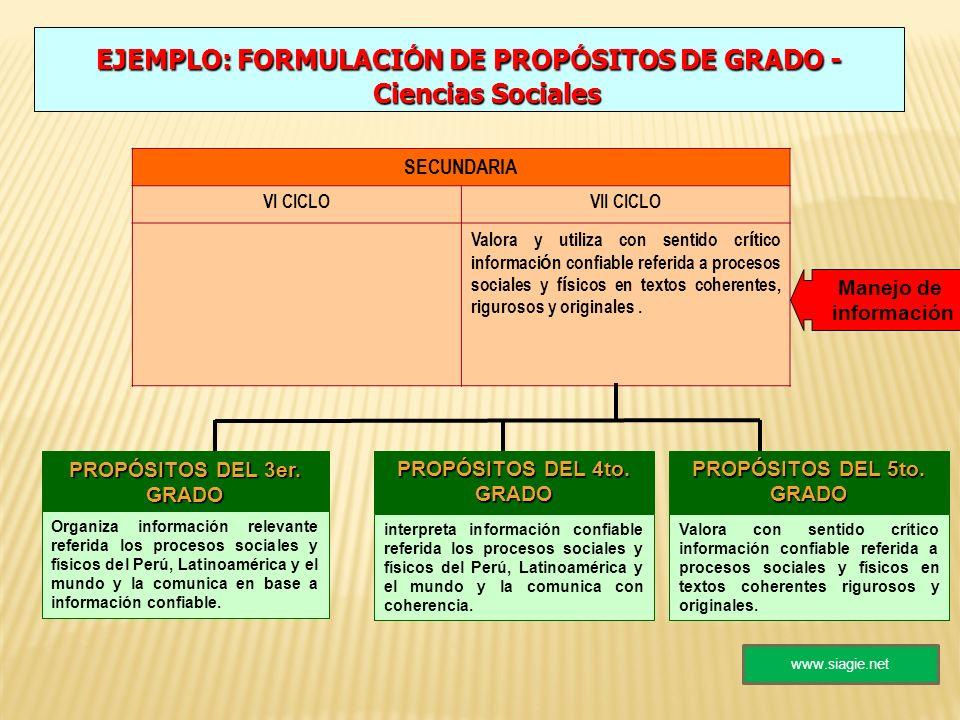 EJEMPLO: FORMULACIÓN DE PROPÓSITOS DE GRADO - Ciencias Sociales