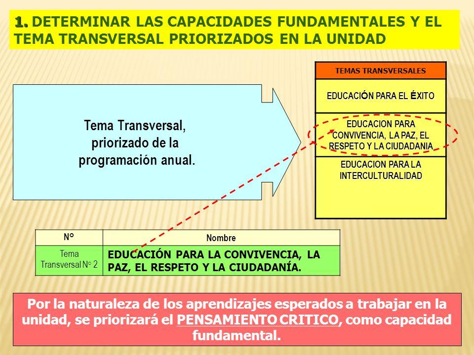 Tema Transversal, priorizado de la programación anual.