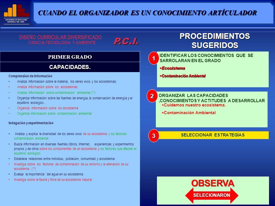 P.C.I. OBSERVA PROCEDIMIENTOS SUGERIDOS