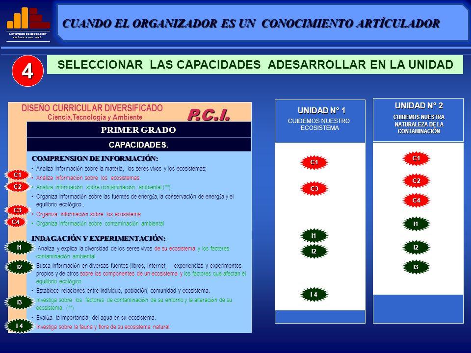 4 P.C.I. CUANDO EL ORGANIZADOR ES UN CONOCIMIENTO ARTÍCULADOR