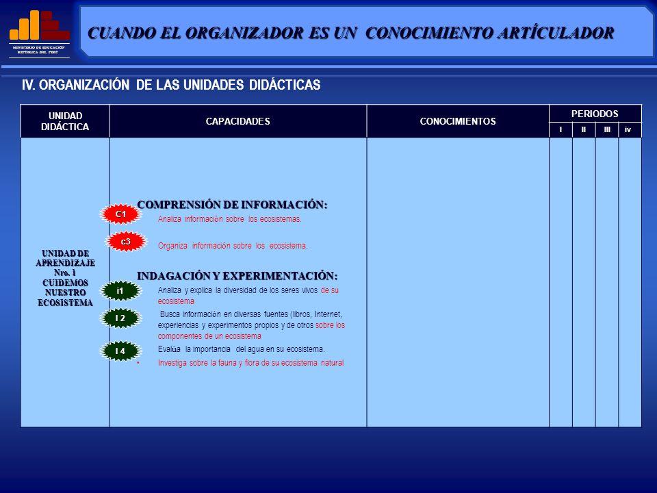 CUANDO EL ORGANIZADOR ES UN CONOCIMIENTO ARTÍCULADOR