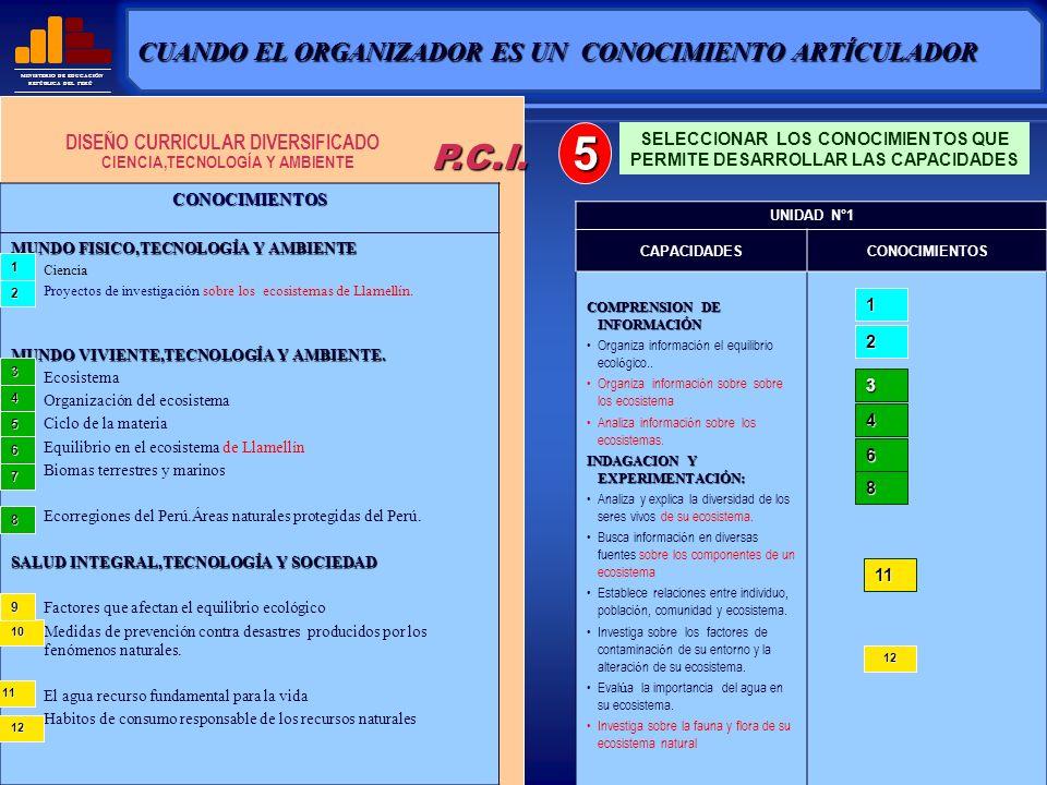 5 P.C.I. CUANDO EL ORGANIZADOR ES UN CONOCIMIENTO ARTÍCULADOR