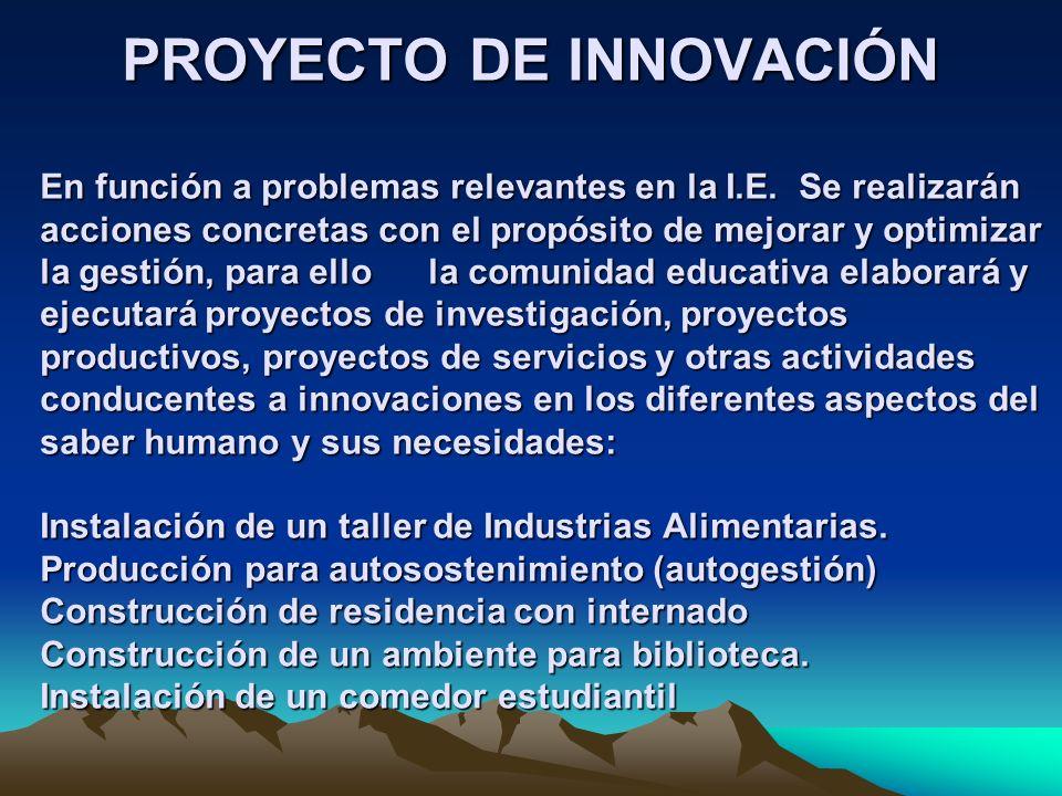 PROYECTO DE INNOVACIÓN En función a problemas relevantes en la I. E