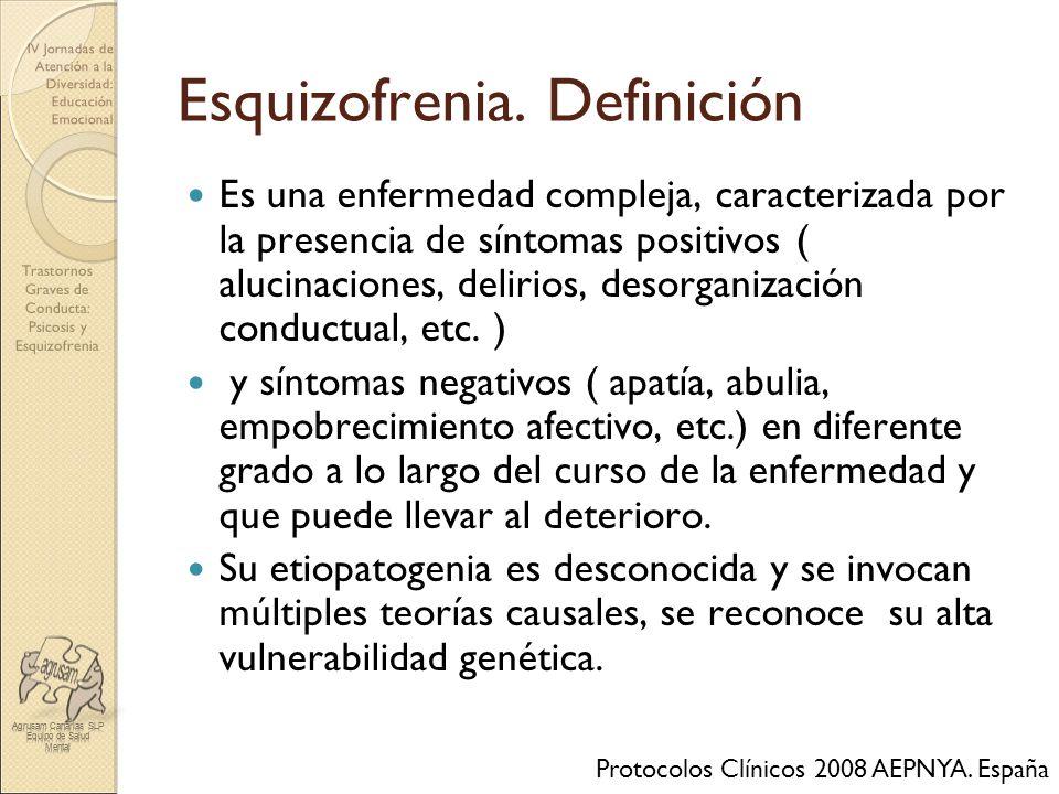 Esquizofrenia. Definición