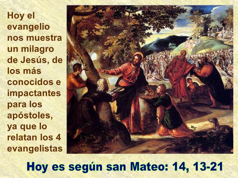 Hoy es según san Mateo: 14, 13-21