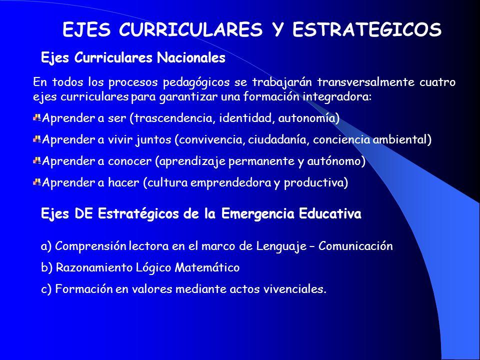EJES CURRICULARES Y ESTRATEGICOS