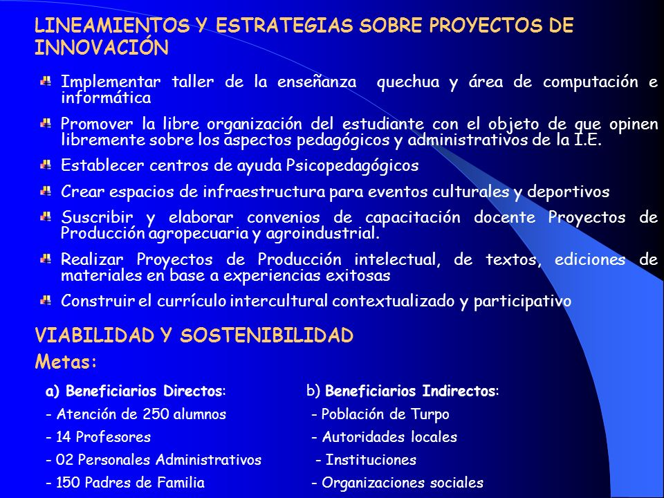 LINEAMIENTOS Y ESTRATEGIAS SOBRE PROYECTOS DE INNOVACIÓN