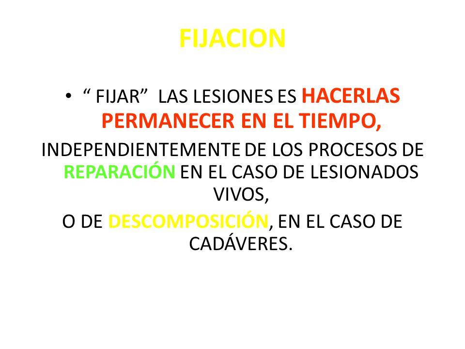 FIJACION FIJAR LAS LESIONES ES HACERLAS PERMANECER EN EL TIEMPO,