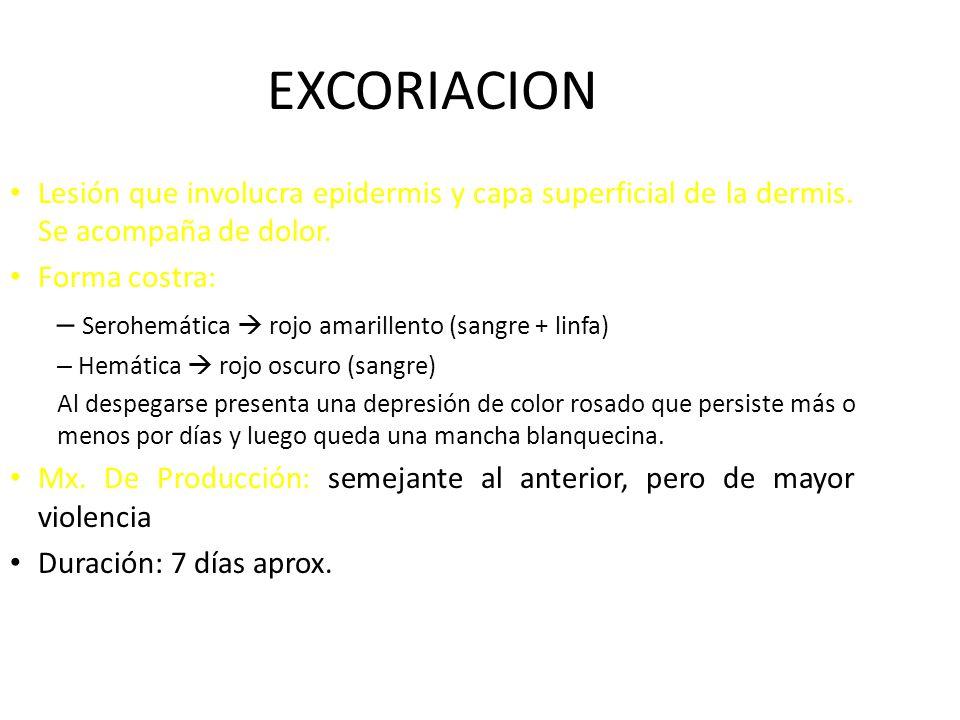 EXCORIACION Lesión que involucra epidermis y capa superficial de la dermis. Se acompaña de dolor. Forma costra: