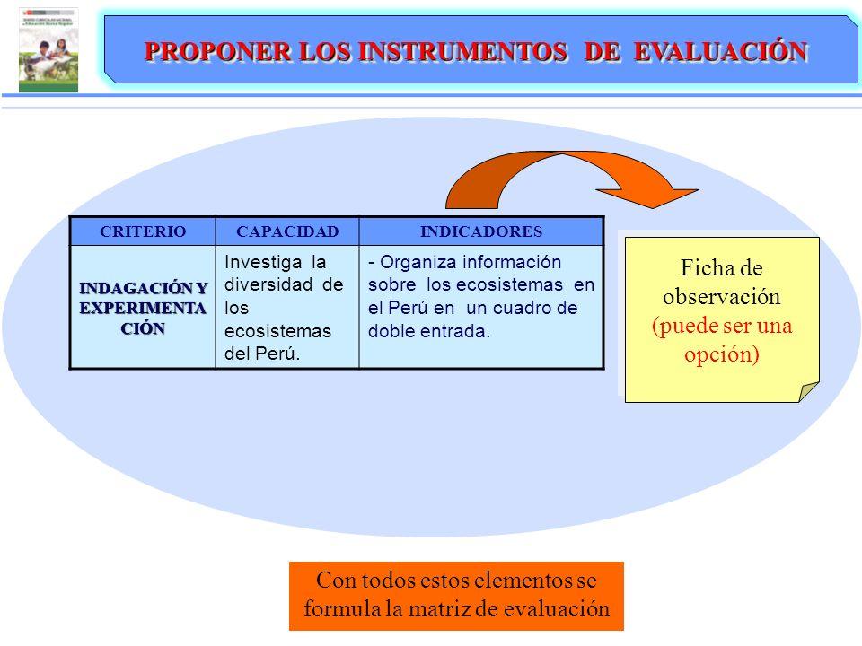 PROPONER LOS INSTRUMENTOS DE EVALUACIÓN INDAGACIÓN Y EXPERIMENTACIÓN
