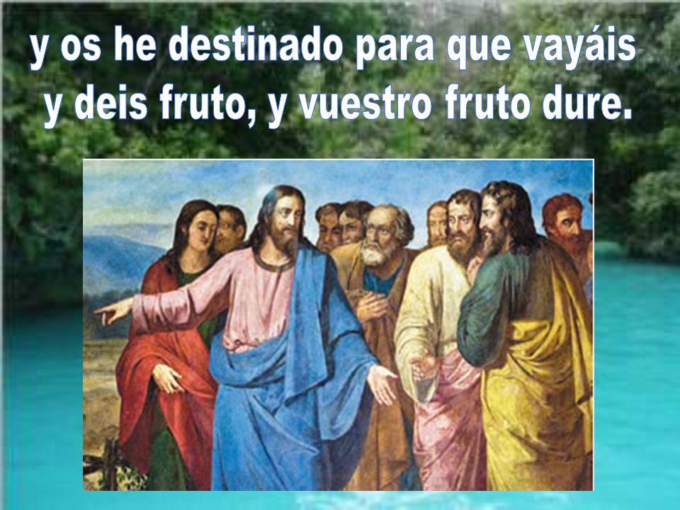 y os he destinado para que vayáis y deis fruto, y vuestro fruto dure.