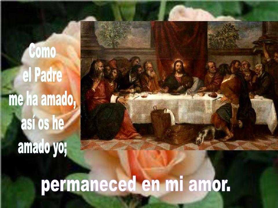 Como el Padre me ha amado, así os he amado yo; permaneced en mi amor.