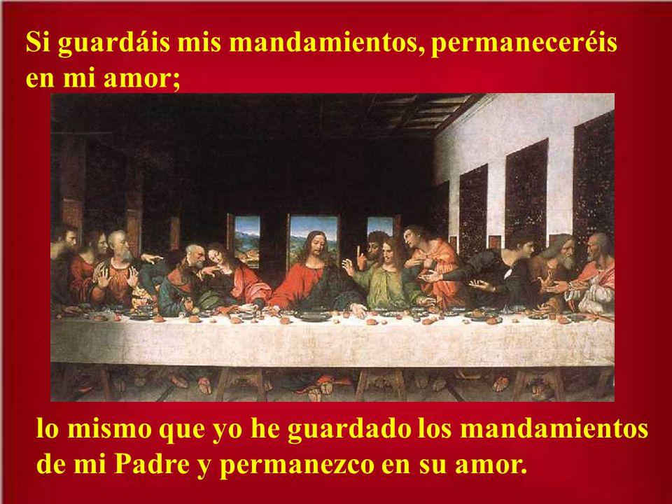Si guardáis mis mandamientos, permaneceréis en mi amor;