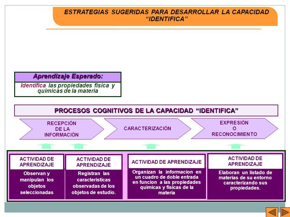 ESTRATEGIAS SUGERIDAS PARA DESARROLLAR LA CAPACIDAD IDENTIFICA
