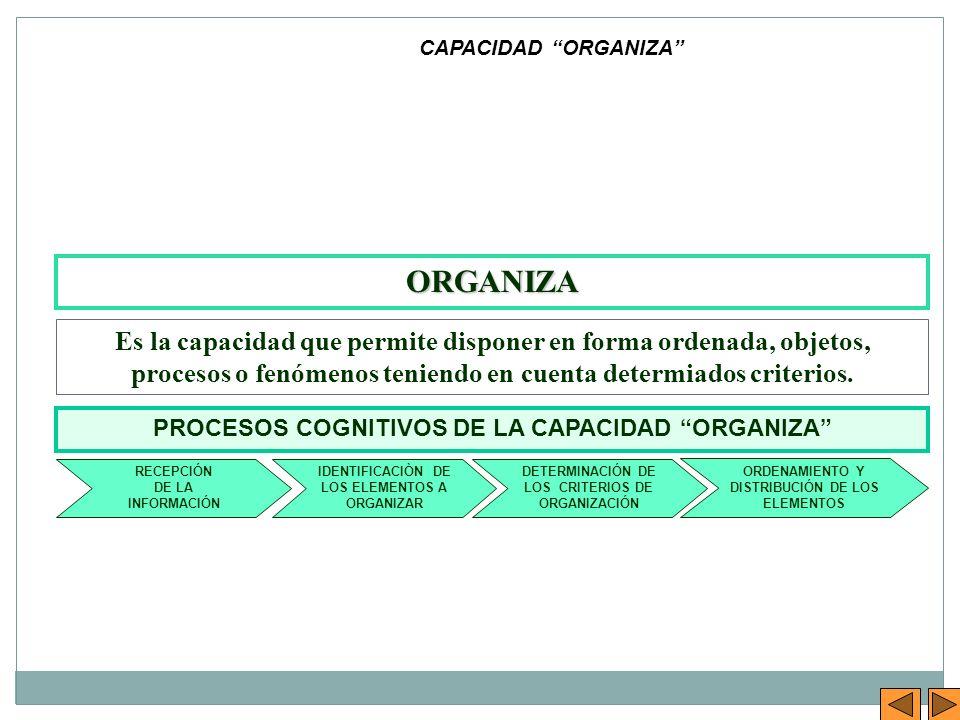 CAPACIDAD ORGANIZA ORGANIZA.
