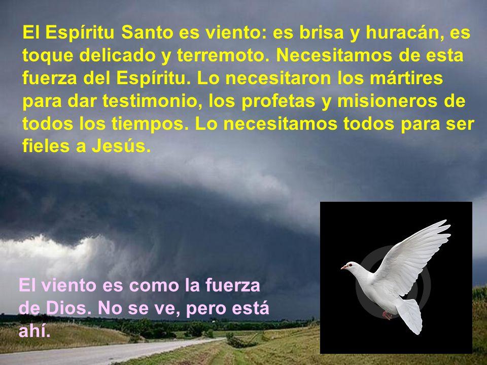 El Espíritu Santo es viento: es brisa y huracán, es toque delicado y terremoto. Necesitamos de esta fuerza del Espíritu. Lo necesitaron los mártires para dar testimonio, los profetas y misioneros de todos los tiempos. Lo necesitamos todos para ser fieles a Jesús.