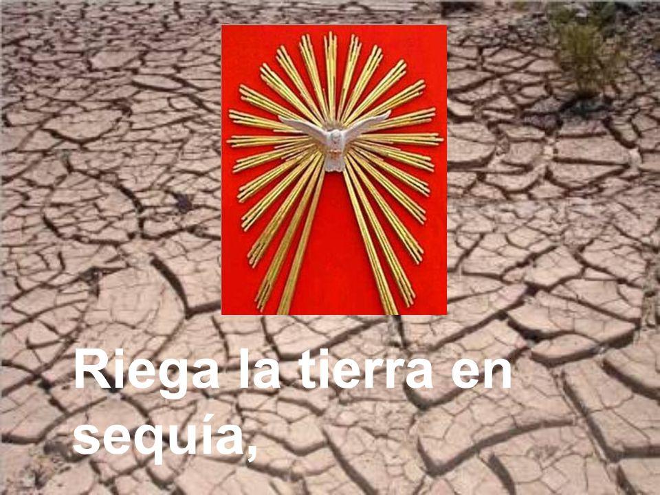 Riega la tierra en sequía,