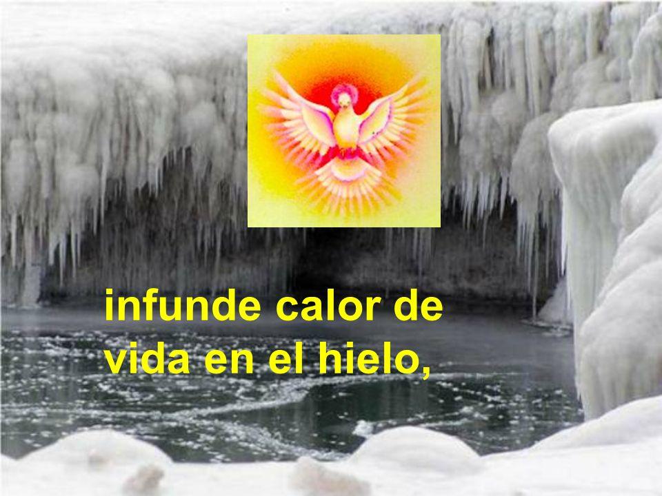 infunde calor de vida en el hielo,