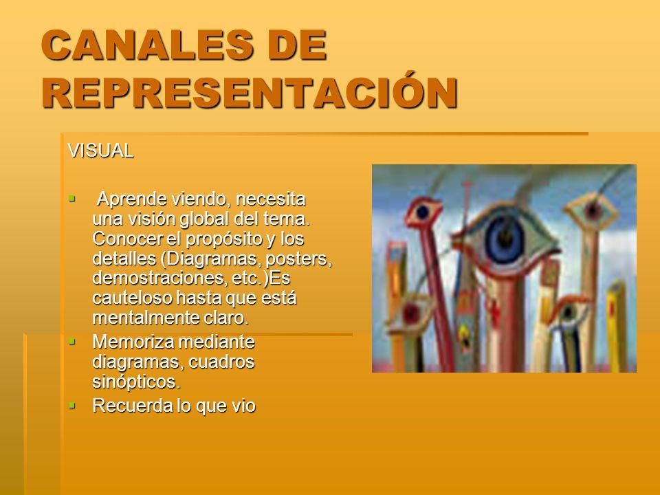 CANALES DE REPRESENTACIÓN