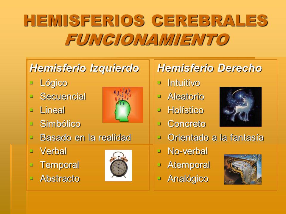 HEMISFERIOS CEREBRALES FUNCIONAMIENTO