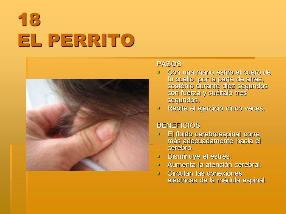 18 EL PERRITO PASOS.