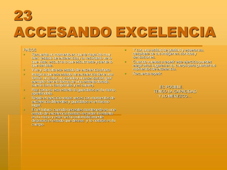 23 ACCESANDO EXCELENCIA PASOS