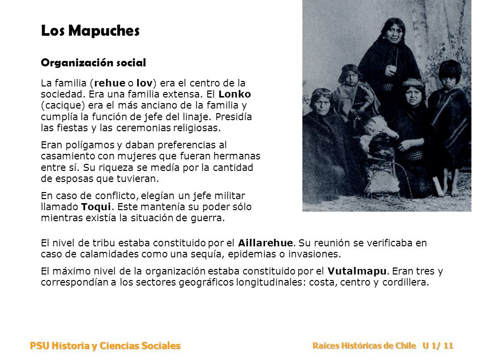 Los Mapuches Organización social