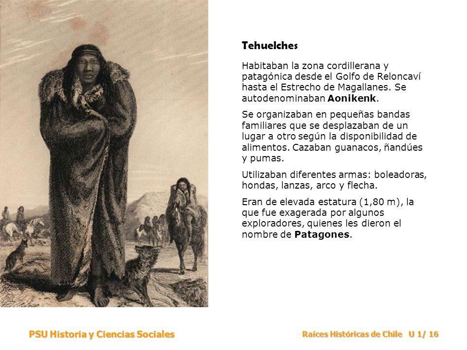 Tehuelches Habitaban la zona cordillerana y patagónica desde el Golfo de Reloncaví hasta el Estrecho de Magallanes. Se autodenominaban Aonikenk.