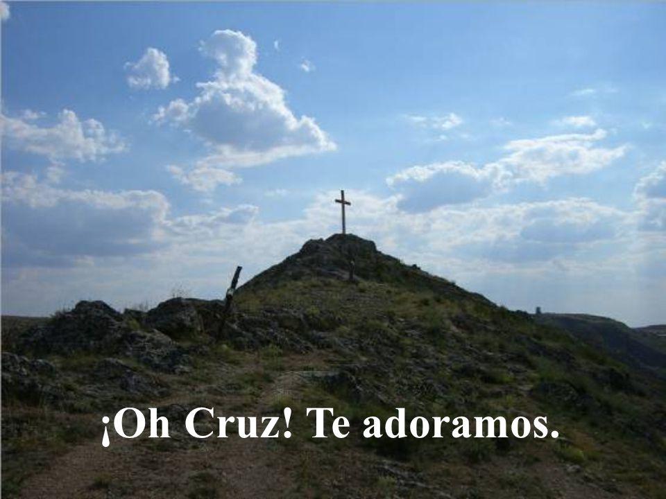 ¡Oh Cruz! Te adoramos.
