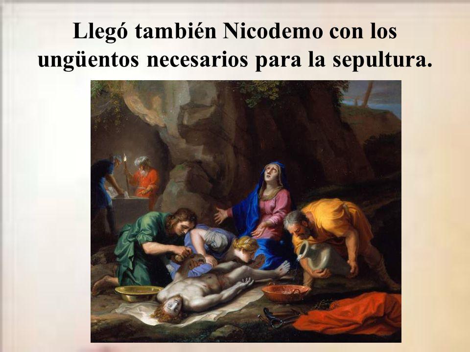 Llegó también Nicodemo con los ungüentos necesarios para la sepultura.