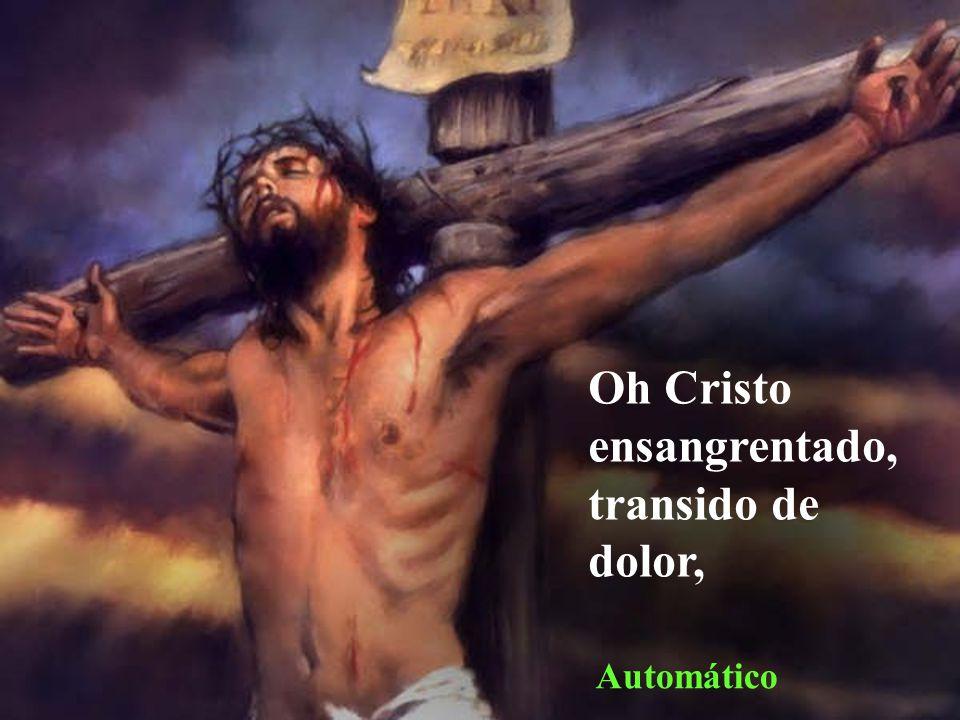 Oh Cristo ensangrentado, transido de dolor,