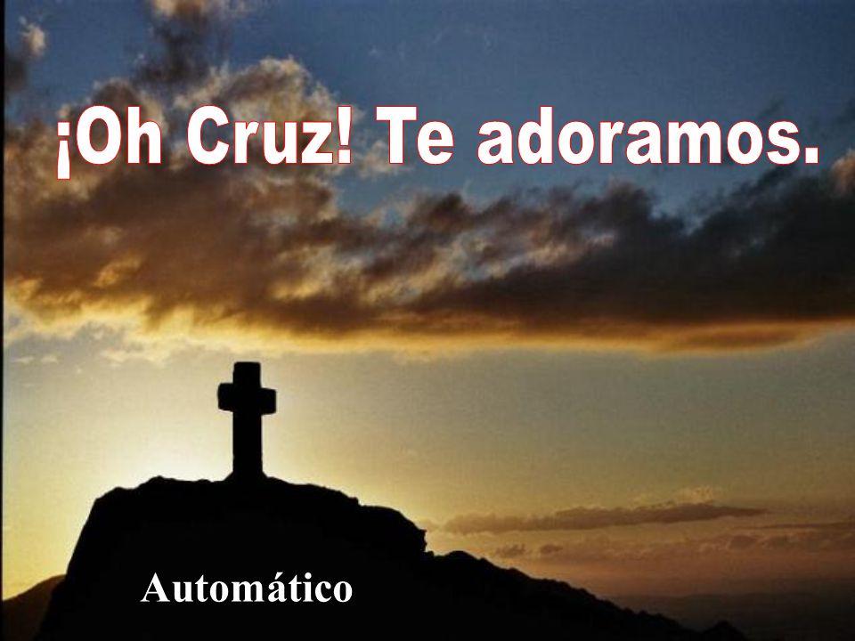 ¡Oh Cruz! Te adoramos. Automático